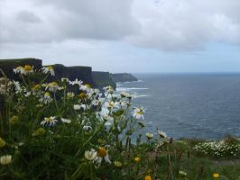 Another shot of Cliffs of the Moher by Amigurumi-Lover