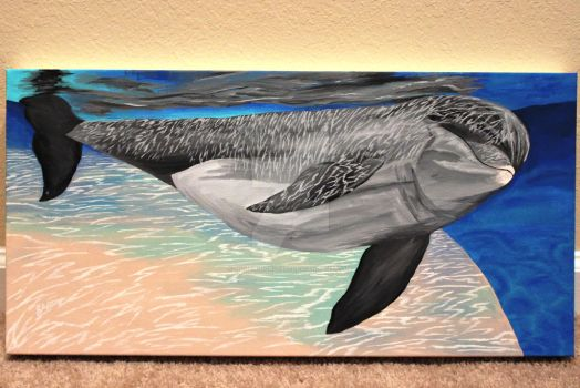 --SOLD-- Dolphin Underwater by Dolphingrl1331