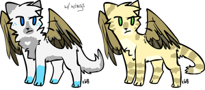 Winged cats adopt 10 points [closed~!] by AkariN3ko
