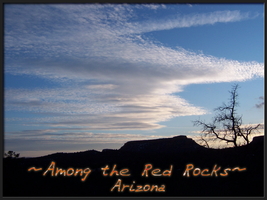 Among the Red Rocks by ToadsDontExist