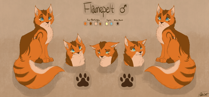 || Flamepelt Reference Sheet || by TabbyCat0066