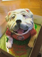 Georgia Bulldog Cake by ArtsyLady