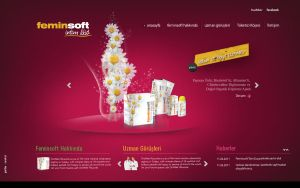 Feminsoft Web Concept by grafiket