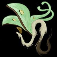 Bugdragons: Luna Moth by NightmareCrow