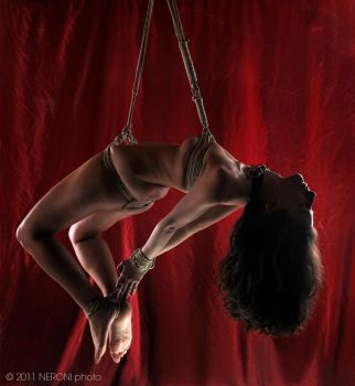 Serene Suspension by FotoArtImages