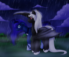 Shelter from the Rain - By SkyHeavens by Tomdepl