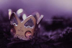 The Crown by PhotosByMeR93