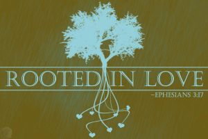 Rooted In Love by christians