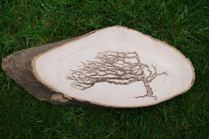 Illustration on Wood with Fire by clairefree