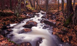 The river flow by jsanna