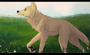 Walk with the noise by Ivory-Chaos