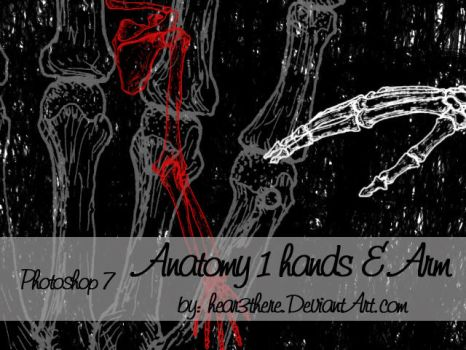 Anatomy 1 by hear3there