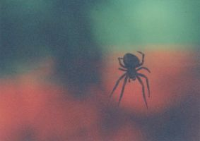 Arachnid-Colour by tractern
