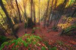 indian summer by MartinAmm