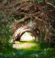 The Faeries Path by VioletSun