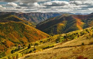 Autumn colors in Apuseni Mountains 7 by adypetrisor