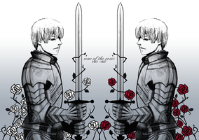 hetalia - knights of the rose by lackofsleep