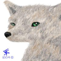 Fuzzy Wolfie by LastHarliquin