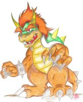 Bowser Koopa by Sandragon