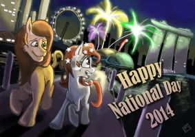 SBS National Day 2014 by MysteriMaan