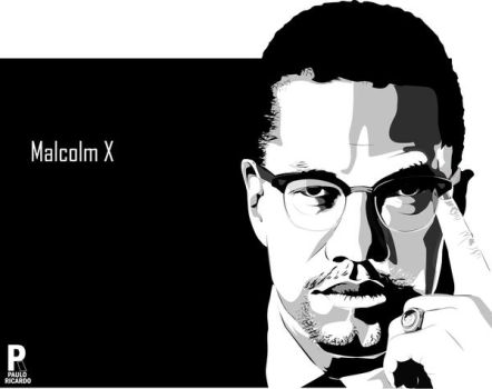 malcolm x outline Stephen tuck revisits malcolm x's historic 1964 speech at the oxford union and explains why his words so electrified the audience coming to the union also provided him with an iconic platform from which to outline his views he had long since left behind his racial dogmatism (in which he argued that.