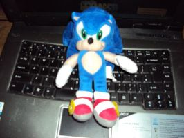 Sonic Plush No.11 by DazzyDrawingN2