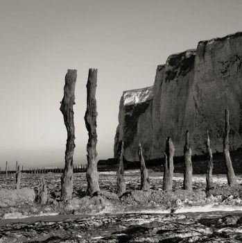 Poles on the Beach by madvax