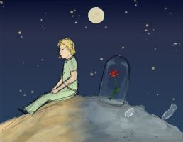 The Little Prince by dragonlover-samantha