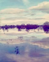 Floods by PetiniBeag
