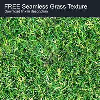 Free Grass Seamless Texture by lickmystyle