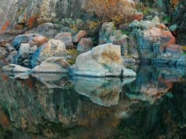 natures paintbrush- reflection by bkitten1