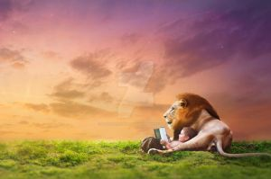 A Lion's Imagination by roguewavephotography