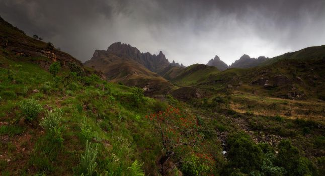 Drakensberg Storms by carlosthe