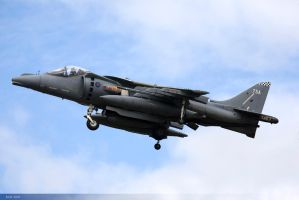 Harrier 75A by JHILLS