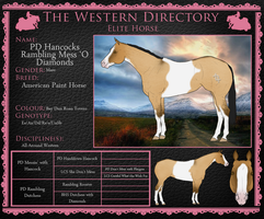 Bluff - WD Elite 109 by painted-cowgirl