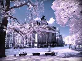 City Center of Dresden infrared by MichiLauke