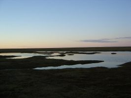 tundra pond 1 by Arctic-Stock
