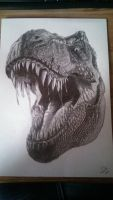 T-Rex Drawing by MadPolarBear97