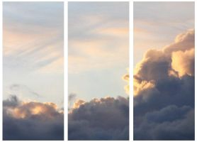 A January Morning Triptych by linderel