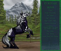 RT Mid Vur Shaan by RoseThornStables