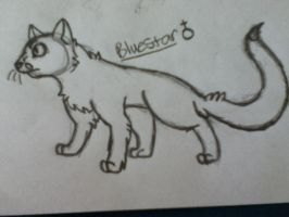 Bluestar by Infected-Shadows