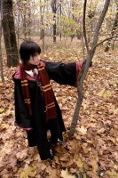 James Potter by KateFromMoon