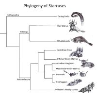 Phylogeny of Starruses by Malicious-Monkey