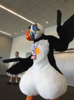 Anthrocon 2014: Tuft the Puffin by murkrowzy