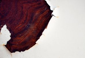 Marbled rust stain by mercurycode