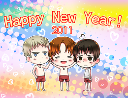 HAPPY NEW YEAR 2011 by aster-lili
