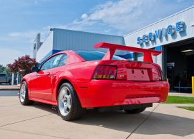 2014 Mustang Round Up 003 by Stig2112