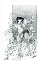 Weapon X Escapes by kohse