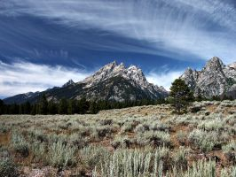 Grand Tetons by themobius