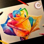 Rainbow rose by clarke-art
